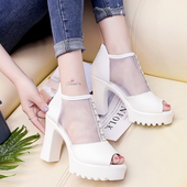 Много интересни и модерни дамски ежедневни обувки с мрежа и висок дебел ток